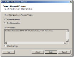 delimiter-flat-file-schema-wizard-3