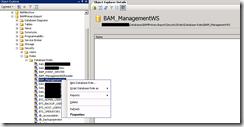 BAM-ManagementWS