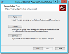 BTS-2013-Adapter-Pack-18-Choose-Setup-Type-screen