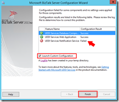 128-BizTalk-Server-2013-R2-Microsoft-UDDI-Services-completed