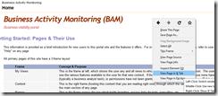 BAM-Portal-Firefox-IE-Tab-Extension