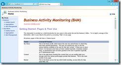 BizTalk-Server-2013-R2-BAM-Portal-IE11-compatibility-problems-fixed
