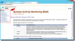 BizTalk-Server-2013-R2-BAM-Portal-IE11-compatibility-problems