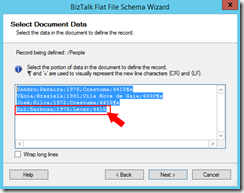 03-BizTalk-Flat-File-Schema-Wizard-Select-Document-Data-Page-option-3